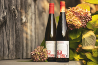 Redstone 2019 gewurtztraminer 3914 copy