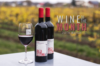 2014 Merlot - Wine of the Month - 12 Pack